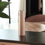 Besiter BST-0177 10400mAh PowerBank Bärbart Batteri för iPhone iPhone 6 Plus