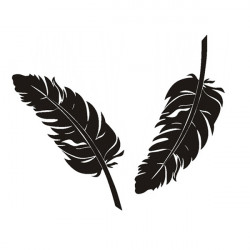 2x Personliga Feather Plumage Bil Stickers Funny DIY Lovely