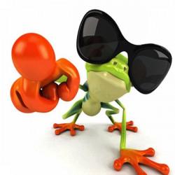 Bil Cykel Frog 3D Sticker Klistermærkers Funny Personlighed Automobile Sticker Klistermærker