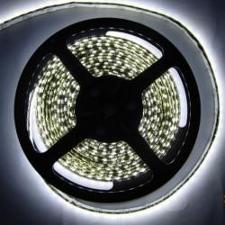 1210 600 5M LED Lysbånd SMD Fleksibel LED Lysbånd