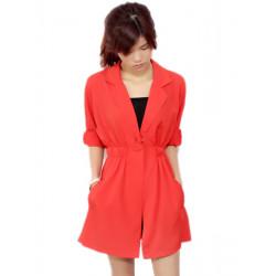 Temperament Tailored Collar Dress