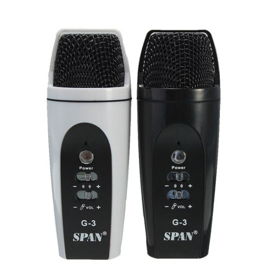 Tragbare Mini Handmikrofon Karaoke Player AusgangsKTV 2021