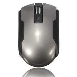 1600 DPI USB2.0  2.4GHz Wireless Optical Mouse