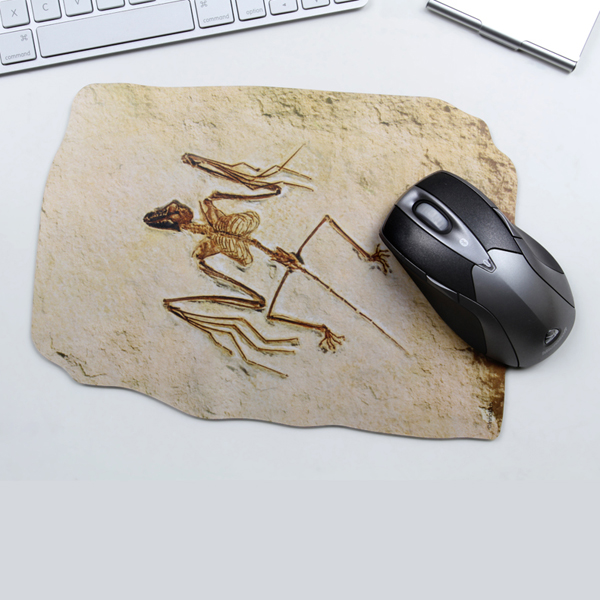 Innokids Three-dimensional Creative Fossil Mouse Pad Keyboards & Mouse