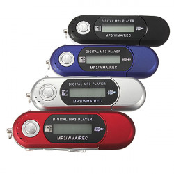 2GB Mini MP3-spelare USB 2.0 Blixt Drive LCD med FM-radio