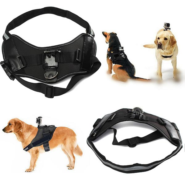 Universal Pet Dog Fetch Chest Harness Strap Belt For GoPro Hero 4 3 2 3 Plus SJ4000 Photography & Camera Acc