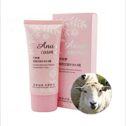 Anan Placenta Omhyggelig Flawless Concealer Blemish Balm BB Cream