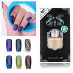 12ml Cat Eyes Magnetic Magic Nail Art UV Gel Polish Nail Art