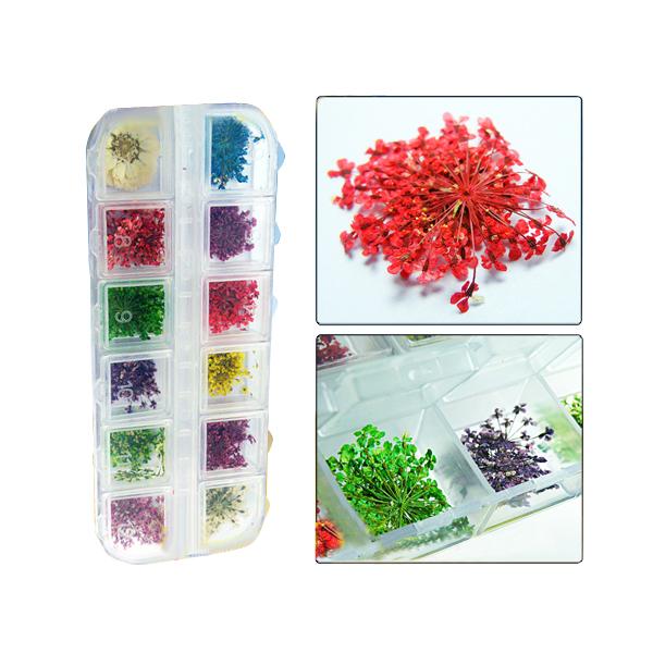 12pcs Real Dry Dried Flower Nail art Tips Decoration Nail Art
