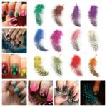 DIY Nail Art 12 Color Feather Series Nail Art