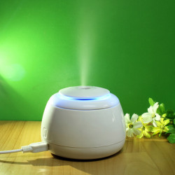 USB Mini Luftfugter Air Mist Atomizer Purifier Diffuser