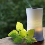 100ML LED Farbwechsel Ultraschall Aroma Diffuser Luftbefeuchter Haushaltsgeräte