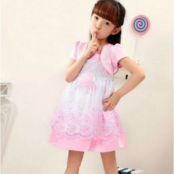 Baby Girls Princess Lace Floral Embroidery Party Dresses