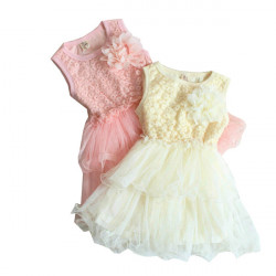 Baby Party Prinsesse Nederdel Piger Lace Blomst Pjusket Kjole TUTU 2-5Y