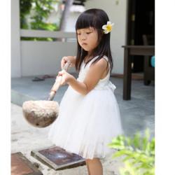 Piger Prinsesse Blomst Lace Rose Nederdel Kjole Baby Gauze Kjole