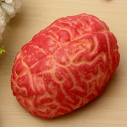 Halloween Scary Body Parts Brain Horror Props Party Decoration
