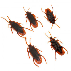 Trick Toys Soft Plastic Simulation Cockroaches