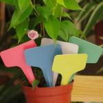 100st 6x3CM Plastfabrik T-typ Taggar Märkning Etiketter Trädgårdsredskap
