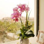 1stk der Kunstseide Schmetterlings Orchideen Blumen Hochzeits Home Decoration Gartengeräte