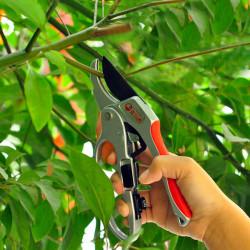 30mm Trädgårds Sectional Sekatörer Saxar Branch Cut Trimmer