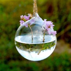Kugel Form hängender GlasVase Hydrokulturpflanzen Blumen Behälter