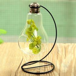 Birne formen Glasvase Micro Landschaft Eco Flasche mit Halter