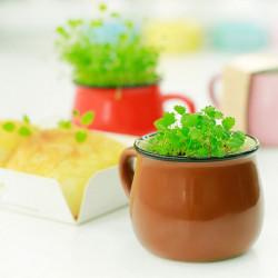 Keramik DIY Mini Coffee Kopp Krukväxt Växt Decor