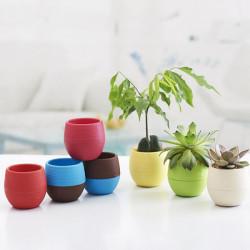 Farverige Blomst Pot Sukkulenter Blomsterkrukke Hjem Kontor Decor