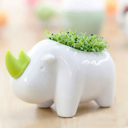 DIY Tier Elefant Nashorn Pflanztopf Office Desktop Dekor