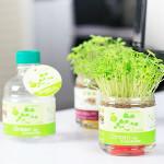 DIY Carbon Ceramic Ball Anion Potted Planting Grass Desktop Aerobic Gardening