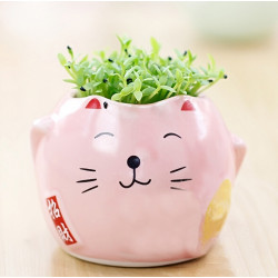 DIY Mini Djur Katt Grönt Gräs Krukväxt Decor