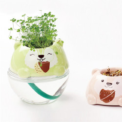 DIY Mini Cute Bear Grass Potted Plant Desktop Office Decor