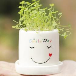 DIY Mini Glücklicher Engels Grass Topf Liebhaber Pflanzen Desktop Dekor