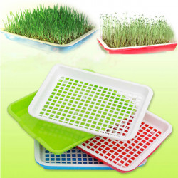 Double Layer Bean Sprout Seeds Germinating Pot Sprout Tray