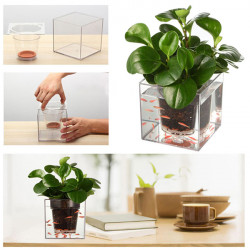 Double Use Crystal Cube Flowerpot Auto-irrigation System Plant Fish Farming