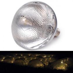 E27 250W Waterproof Warm Yellow Grow Light Bulb Garden Plant Lamp
