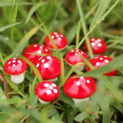 Have Micro Landskab DIY Rød Skum Mushroom Dekorationer