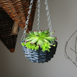 Have Retro Saftige Planter Hængende Wicker Blomst Pot