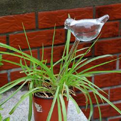 Glasvogel Automatische Tropfbewässerung Topfpflanzen Bewässerungssteuerung