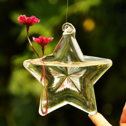 Lucky Star Form Glas Blomst Vase Hydroponiske Plant Container