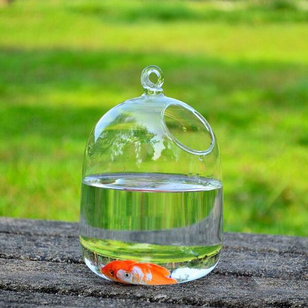 Micro Landskap Flaska Glas Vas Blommor Växter Hanging Garden Trädgårdsredskap