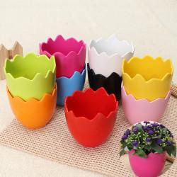 Mini Mode Kunststoff Eierschale Innen Blumen pflanzt Töpfe