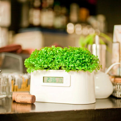 Mini Kraftwerk kreativer DIY Anlagen Digital Clock Desktop Potting
