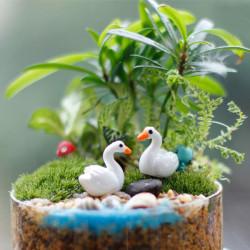 Mini Harz White Swan Garden Micro Landschaft DIY Dekorationen