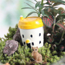 Resin Tea Kopp Micro Landskaps Dekorationer Trädgård DIY Decor