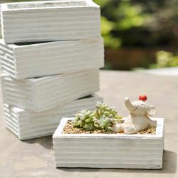 Weiße hölzerne Blumentopf Box Sukkulenten Blumentopf Bonsai