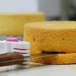 DIY Kage Bread Skærer Leveler 5 Lag Slicer Cutting Fiksator Værktøj Køkken