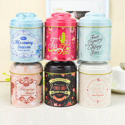 Double Cover Flower Pattern Tea Coffee Candy Storage Tin Box