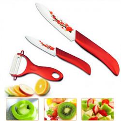 Geschenke Küche Rote Blume gemaltes keramisches Frucht Messer Set