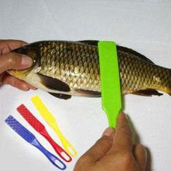 Practical Seafood Plastic Scale Scraper - Random Colors